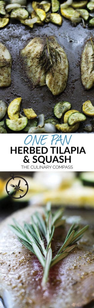This One Pan Herbed Tilapia and Squash is a great 30 minute meal with little clean up! Perfect for weeknights!