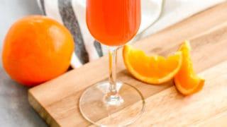 Hibiscus Citrus Mimosa