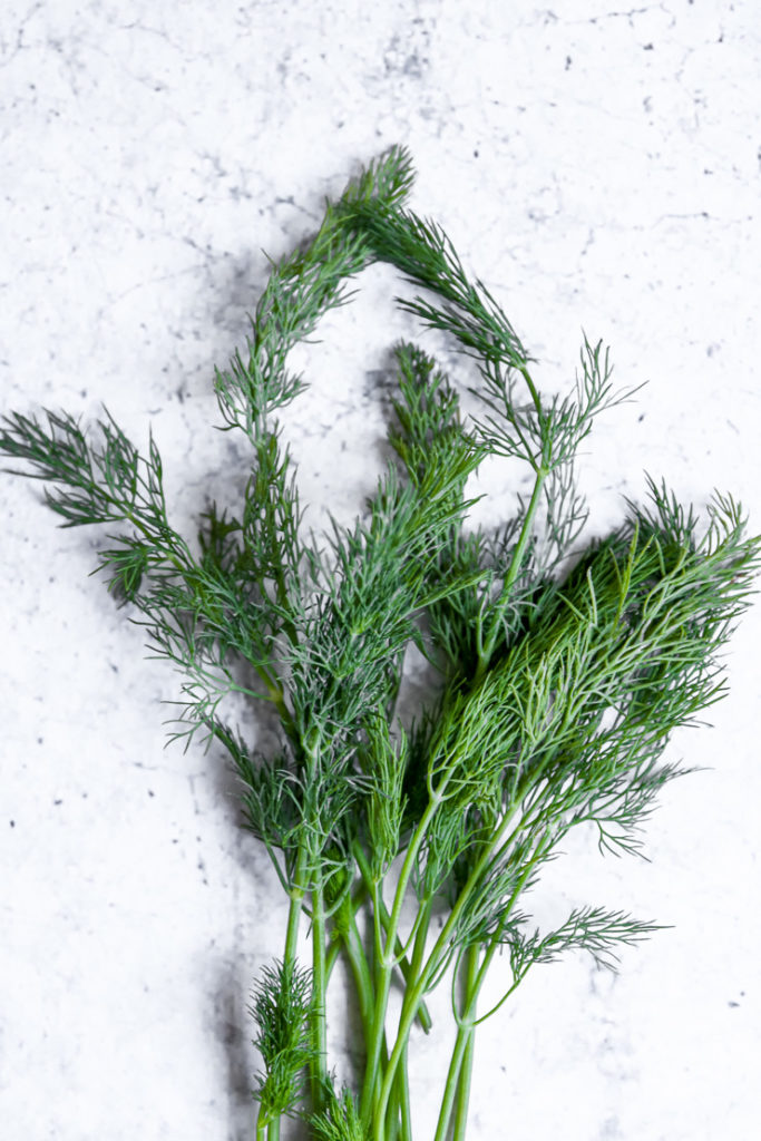 a sprig of fresh dill