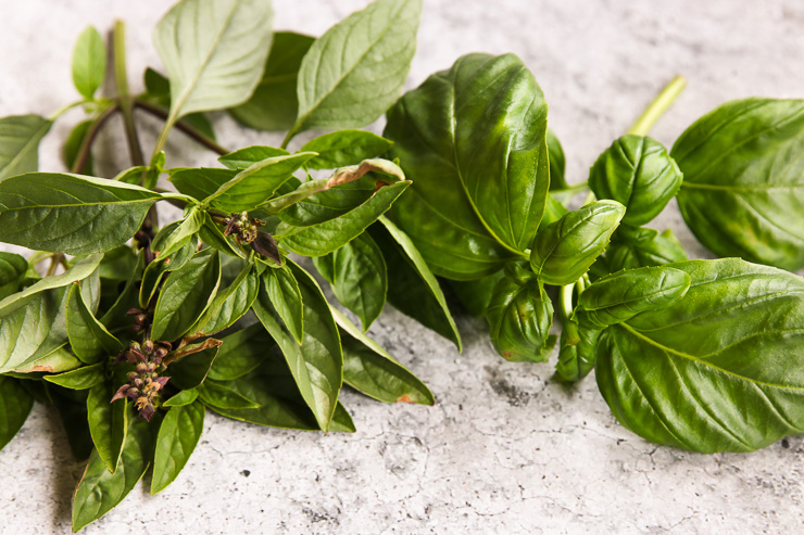 A closeup of Thai Basil and Basil leaves